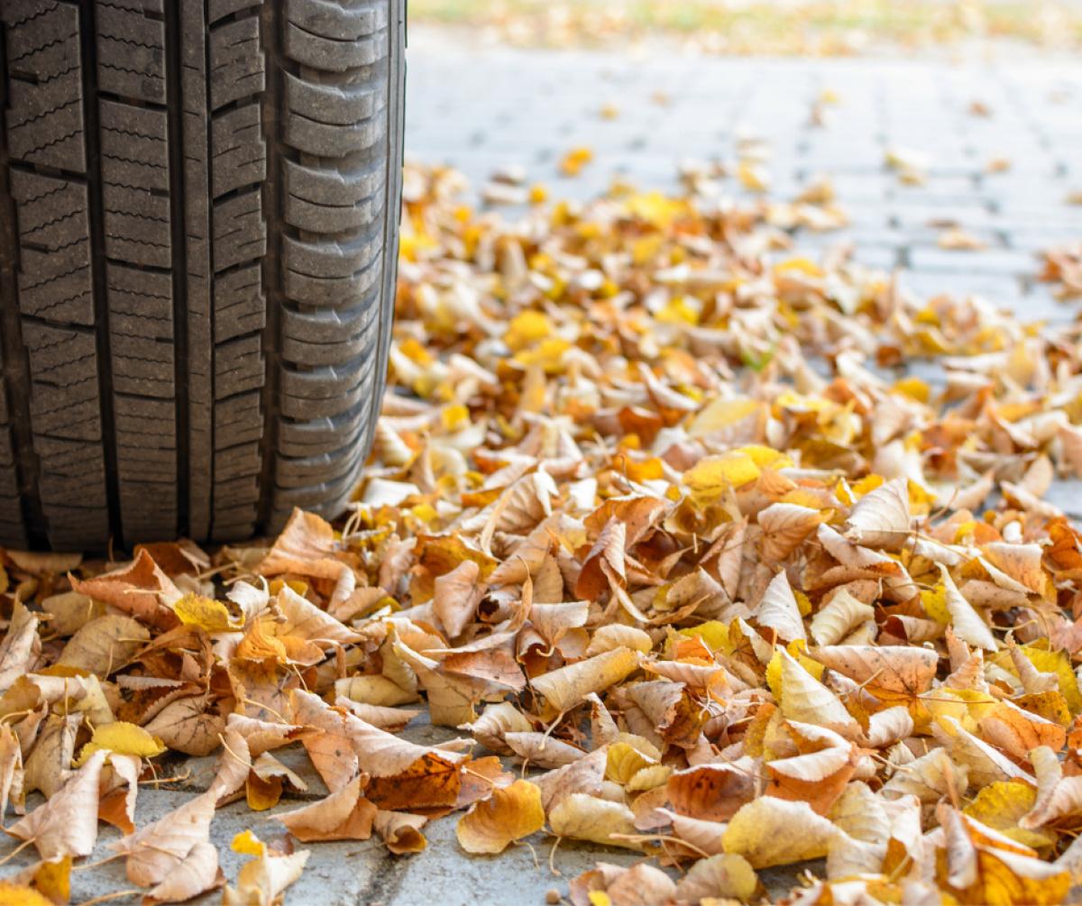 Veilig de weg op tijdens de herfst!-2021-10-06 09:57:05
